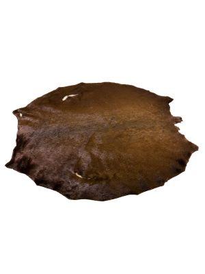 hyljenahka värjätty ruskea